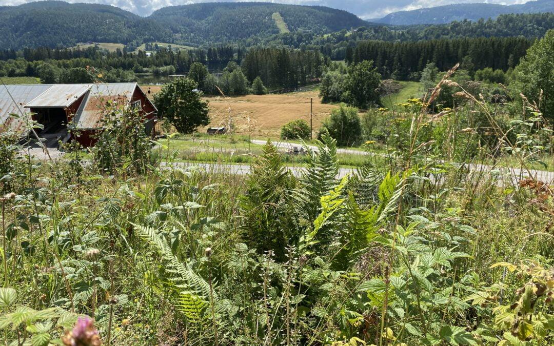 Telemark; sluser, sykkeltur og vingården